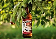 10 странных фактов о пиве