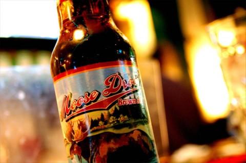 Пиво «Moose Drool» («Слюнявый лось»)