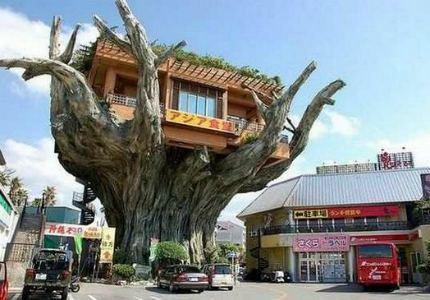 Самые необычные бары в мире