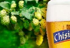 Молдавское пиво