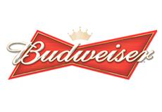 budweiser-beer