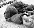 Более 5 тыс. человек в год в Украине умирает от отравления фальсифицированным алкоголем