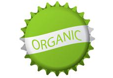 Органическое пиво: вкусно и полезно