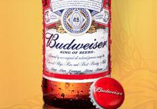 Европейский Союз разрешил регистрацию американского пива Bud