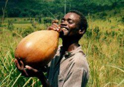 алкоголь домашнего производства в Африке