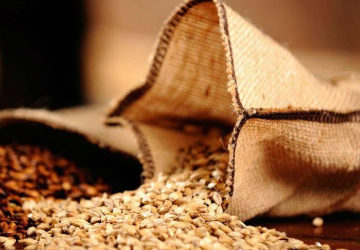 Производство солода в Украине