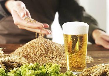 Рынок пивоваренного ячменя в Украине