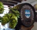 В словенском городе Жатец откроют пивной фонтан
