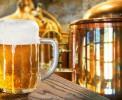 Вследствие подключения к ЕГАИС российские мини-пивоварни несут убытки