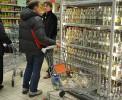При выборе алкоголя белорусы предпочитают водку