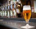 В Украине выросла цена на пиво