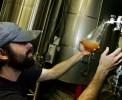 10 случайных сортов пива