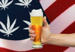Пиво в коноплей