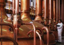 Krupneyshie pivovarennyie kompanii mira – 2016. TOP-20