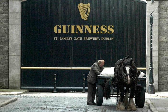 Guinness_beer