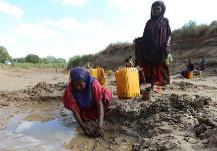 загрязненная вода для питья