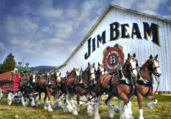 Коллаборация Budweiser и Jim_Beam