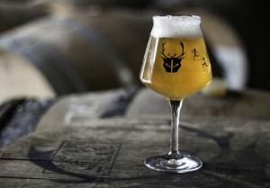 Крафтовые пивоварни Европы. Wild Beer Co.